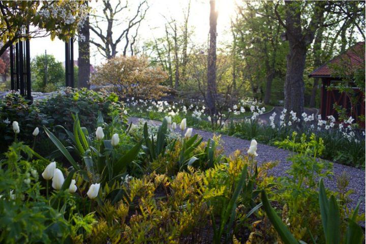 Privat garden / Ulf Nordfjell, Photographer Jürgen Becker